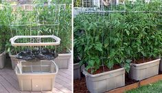 Earthtainer: Self-watering Storage Container Gardening