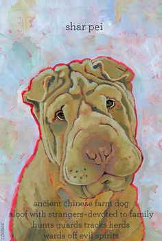 Shar Pei No. 1 - magnets, coasters and art prints Cachorros Shar Pei, Pet Shop, Shar Pei Fever, Pet Memorial Gifts, Remembrance Gifts, Farm Dogs, Dog Mom Gifts, Rainbow Bridge, Pet Memorials