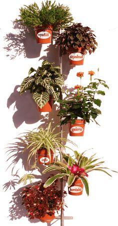 Kytkoman - chytrý stojan na květiny