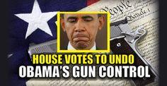 BREAKING : House Votes to UNDO Obama's GUN CONTROL – TruthFeed