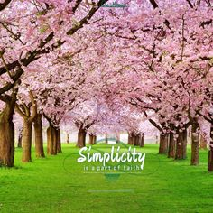 #simplicity is a #part of the #faith