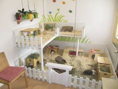 Beautiful guinea pig cage. My daughter would love this!