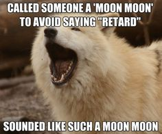 """It's true.<< I said """"MOON MOON DARN IT"""" when someone was acting stupid in my school and they're like: """"Who the heck is Moon Moon?"""" GET DUNKED ONNNN"""