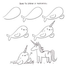 How to draw a narwhal - Philip Tseng
