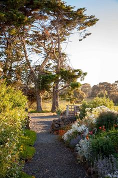 Good old-fashioned hard work and choosing hardy plants that can withstand drought and frost has seen this garden in Pipers creek, Victoria, Transformed into a true beauty.