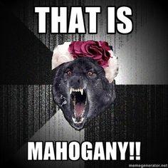 The Hunger Games jokes. Hunger Games Jokes, Hunger Games Trilogy, Wolf Meme, Tribute Von Panem, Effie Trinket, Funny Memes, Hilarious, Know Your Meme, Catching Fire