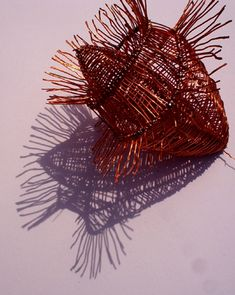 Louise Baker: Contents: Wire Sculptures: Pods and Pupae