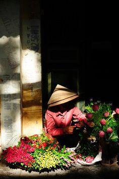 Hoa Hà Nội , Vietnam