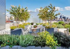 Open-Air Rooftop Garden with Stunning City Views, New York, NY Outdoor Pool, Outdoor Spaces, Outdoor Living, Outdoor Decor, Rooftop Garden, Balcony Garden, Lush Garden, Herb Garden, Tree Planters