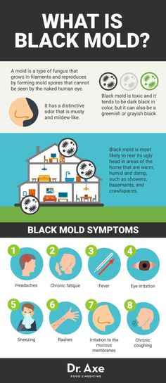 Black Mold Symptoms + 12 Natural Remedies Black mold exposure and black mold poisoning can cause a wide range of health problems. Some black mold symptoms can actually be really serious. Natural Home Remedies, Natural Healing, Black Mold Exposure, Black Mold Symptoms, Mold Allergy Symptoms, Mold Prevention, Cleaning Mold, Cleaning Tips, Cleaning Recipes