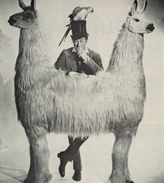Dr Dolittle & The Push-Me-Pull-You. I loved this movie as a kid. The newer version was just crap compared to this.