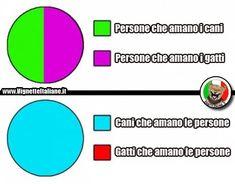 Il diagramma cane gatto (www.VignetteItaliane.it)