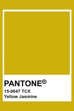 PANTONE 15-0647 TCX Yellow Jasmine #pantone #color Pantone Tcx, Pantone Swatches, Color Swatches, Pantone Color Chart, Pantone Colour Palettes, Pantone Colours, Yellow Pantone, Colour Pallete, Instagram Design