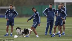 Paulo Dybala plays with a dog that came onto the field during Argentina's…
