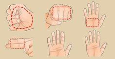 Usted tiene la respuesta para bajar de peso en la palma de su mano – e-Consejos