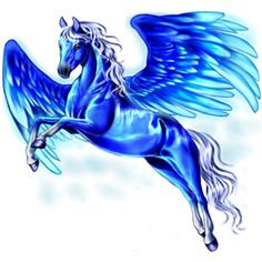 2016/12/11 Pegasus ~