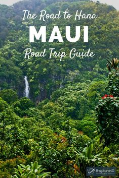 Driving the Road to Hana is easily one of the best things to do in Maui, Hawaii, as it exists as one of the top coastal drives in the world. Drive over dozens of bridges, through sleepy surf towns and past lush forests and waterfalls before reaching the small, remote town of Hana. Practical tips for your trip. | Blog by the Planet D #Maui #Hawaii #roadtriptraveltips