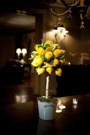 Lemon tree centerpiece