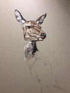 Think I got a good start on my red deer hind too. Might just put the brushes down now methinks. Wouldn't wanna do it ALL in one sitting! #paintinginprogress Part 2 with Tony O'Connor whitetreestudio.ie