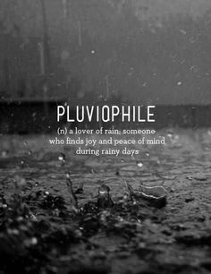 Who Else Finds The Sound Of Rain Charming