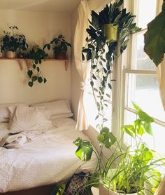 Okay I need to stop pinning houseplants and beds / reading nooks near big windows. So fresh and clean looking!