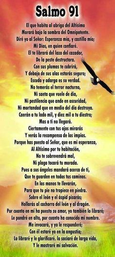 Catholic Prayers Daily, Spanish Prayers, Novena Prayers, Prayer Verses, God Prayer, Biblical Quotes, Bible Verses Quotes, Cute Spanish Quotes, Beautiful Prayers