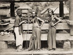 #Batak ancient warriors. Circa #1870. North #Sumatra, #Indonesia.