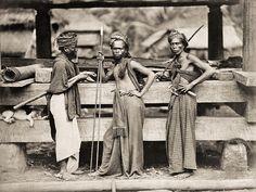 #Batak ancient warriors. Circa #1870. North #Sumatra, #Indonesia.