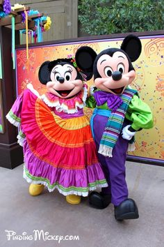 Mickey and Minnie Mouse ❤️❤️❤️❤️❤️❤️❤️🐭🐭 Disney Love, Disney Magic, Walt Disney, Disney Parks, Disney Travel, Disney Characters Costumes, Disney World Characters, Mickey Mouse Outfit, Mickey Minnie Mouse