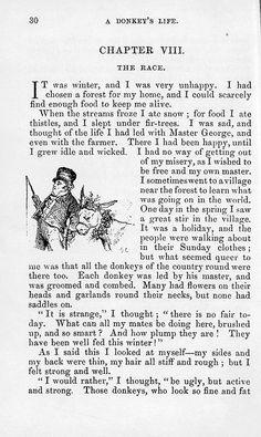 """The adventures of a donkey""  Ségur, Sophie, 1799-1874, Pannemaker, Adolphe François, b. 1822 ( Engraver ). http://ufdc.ufl.edu/UF00080016/00001. University of Florida. Courtesy: © University of Florida George A. Smathers Libraries, Gainesville, FL (USA)."