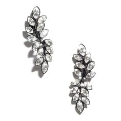 Jewellery & Gifts from Lola Rose, Dogeared, Daisy London, Satya, Bombay Duck and many more. Leaf Earrings, Stud Earrings, Jewelry Gifts, Jewelry Accessories, Daisy London, Lola Rose, Kenneth Jay Lane, Brooch, Crystals