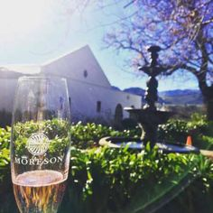 Sip on Methode Cap Classique (MCC) at Moreson Estate in Wine Recipes, South Africa, Cap, Tours, Travel, Baseball Hat, Viajes, Trips, Tourism