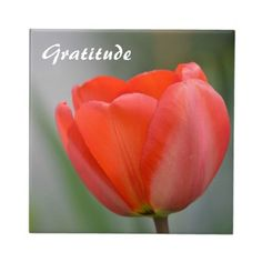 "Red Tulip Floral Gratitude  4.2 (23 reviews)  Size:  Large (6"" X 6"")  In stock!  Quantity:  tile.  As low as $13.75 on a Small (4.25"" x 4.25"")  Add to wishlist  $16.95  per tile"