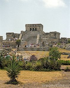Mayan: Tulum (fence or wall) was built by Mayans on the Yucatan Peninsula and inhabited between 13th and 15th centuries. A step runs along the base of the foundation with columns running up the triangular structure resembling an Egyptian pyramid. Molding at the top of narrow doorways.