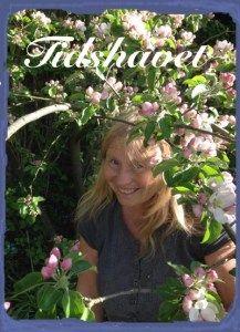 Hei, jeg er forfatter, og det gleder meg. Blog, Bullying, Blogging