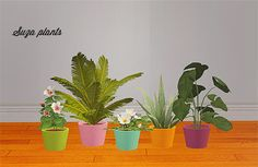 Suza plants pot recolors Credit: Veranka, Eversims Download >> meshes required