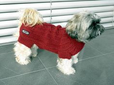 Perro suéter de punto a mano por majStyle en Etsy