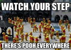 Clean up that pooh!