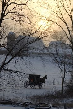Mennonite buggy and farm near Bridgewater, in Virginia's Shenandoah Valley