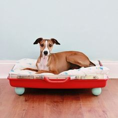 Red suitcase dog bed DIY