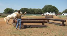 horse obstacle course - Google Search