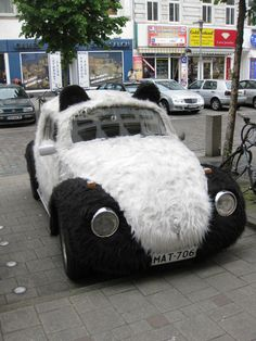 #Panda- #Volkswagen #beetle