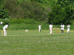 Cricket in Frankfurt