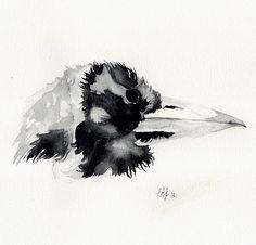 Original magpie watercolour