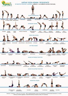 Bikram Yoga Postures, Kriya Yoga, Yoga Ashtanga, Yoga Iyengar, Ashtanga Yoga Primary Series, Yoga Bewegungen, Hot Yoga, Yoga Dance, All Yoga Asanas
