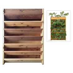Gronomics Vertical Garden Planter - $229.99 @hayneedle.com.com.com.com Crafted from western red cedar for indoor or outdoor use-Features linear growing space of 17 feet-Comes with an irrigation kit-Soil capacity of 4.5 cubic feet and 2-square-foot footprint-Dimensions: 32L x 9W x 45H inches