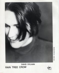 David Sylvian Press release 1991