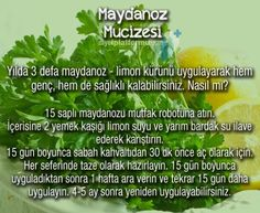 mutlu anne babalar mutlu çocuklar: MAYDANOZ MUCİZESİ Healthy Snacks, Healthy Life, Healthy Eating, Healthy Recipes, Health Diet, Health Care, Health Fitness, Medicinal Herbs, Natural Treatments