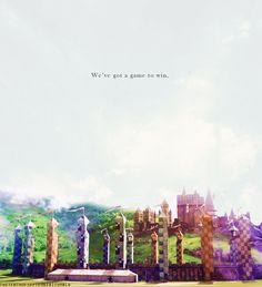 Quidditch!!