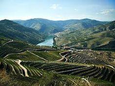 Região Vinhateira do Alto Douro Douro Portugal, Douro Valley, Port Wine, Vineyard, Cruise, British, River, Explore, London